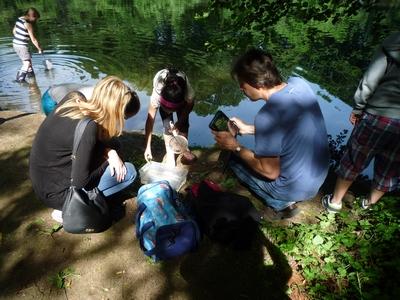 Sommerausflug der klasse 3a in den schlosspark eller for Wassertiere teich